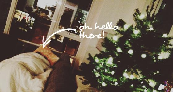Present - Holiday - Tree