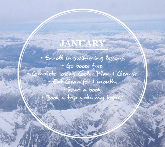 Goals for Januaury - Resolutions - 2013